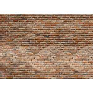 Papel de parede Komar vol.14 - 8-741
