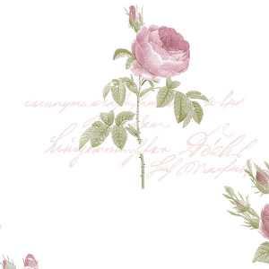 Papel de parede Rose Garden II - CG28820