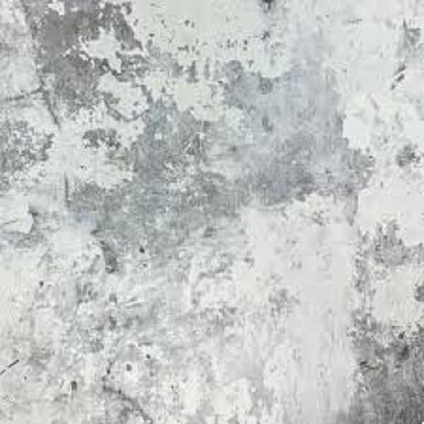 Papel de Parede Exposure - EP3003